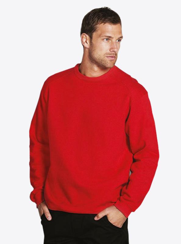 Herren Sweatshirt Russell 262M