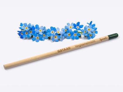 Nachhaltiger Sprout Bleistift als Andenken an Gstaad